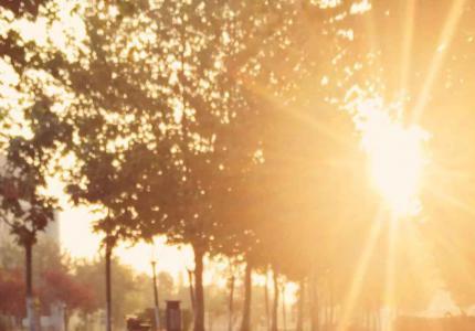 晨光下校园景色